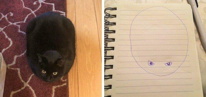 Как схематично нарисовать кота