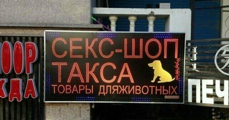 Товары для животных?
