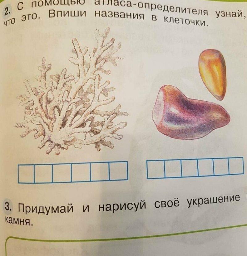 """""""Только с помощью интернета удалось идентифицировать эти гнилые перцы как янтарь"""""""