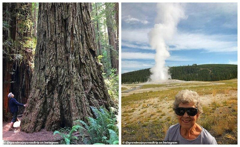 Слева - в национальном парке Редвуд, Калифорния. Справа - в Йеллоустоунском парке, Вайоминг