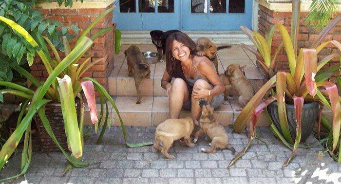 97 бездомных собак под одной крышей спасенные от урагана над Багамскими островами