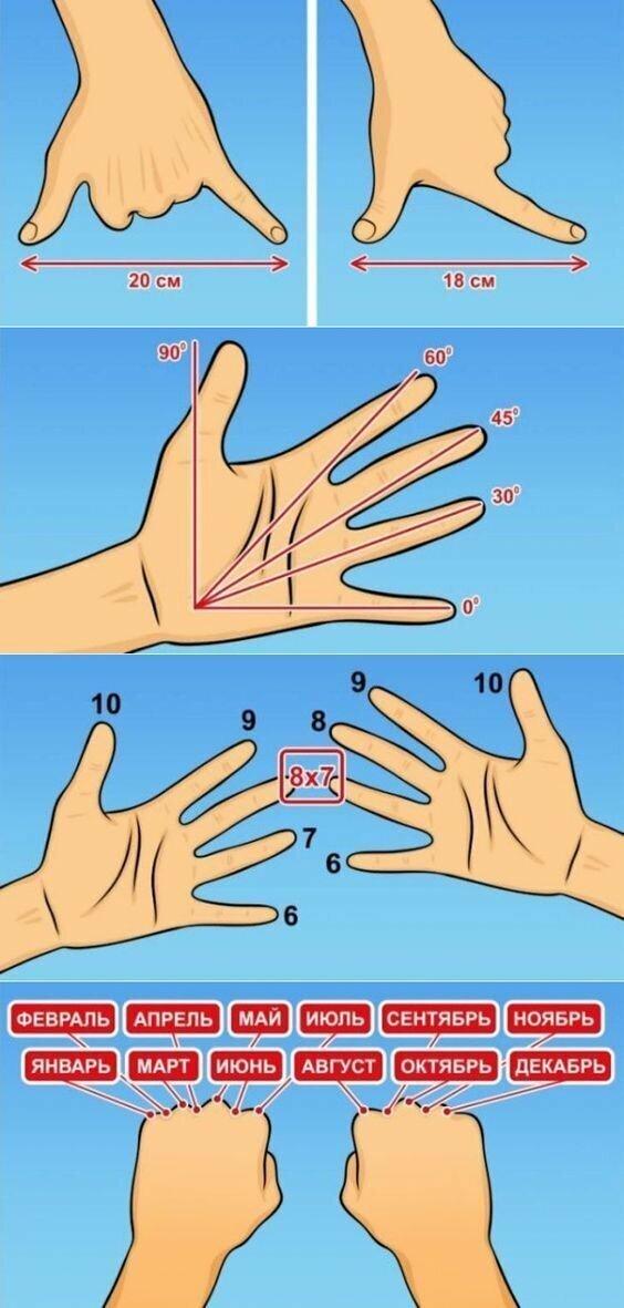Всякие измерительные штучки, которые можно измерить вашими пальцами и прочими частями тела. Гусары, молчать!