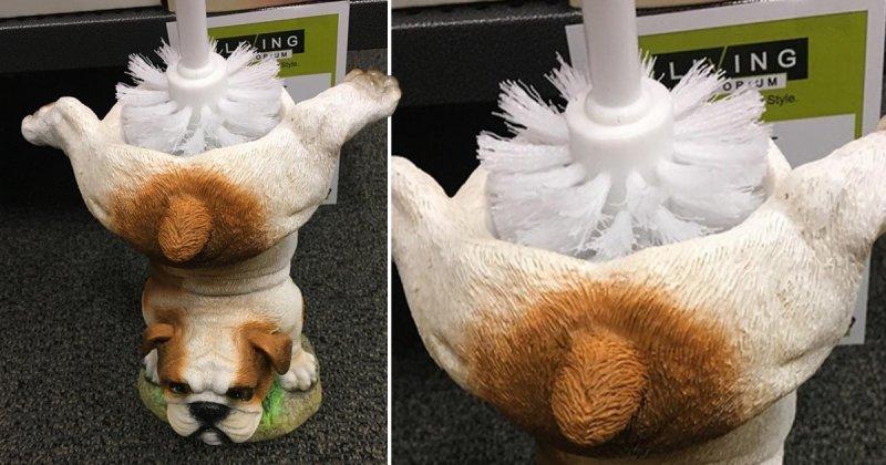 Бедная собачка