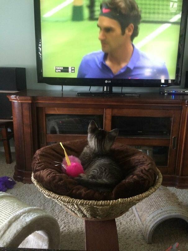 Поклонница тенниса