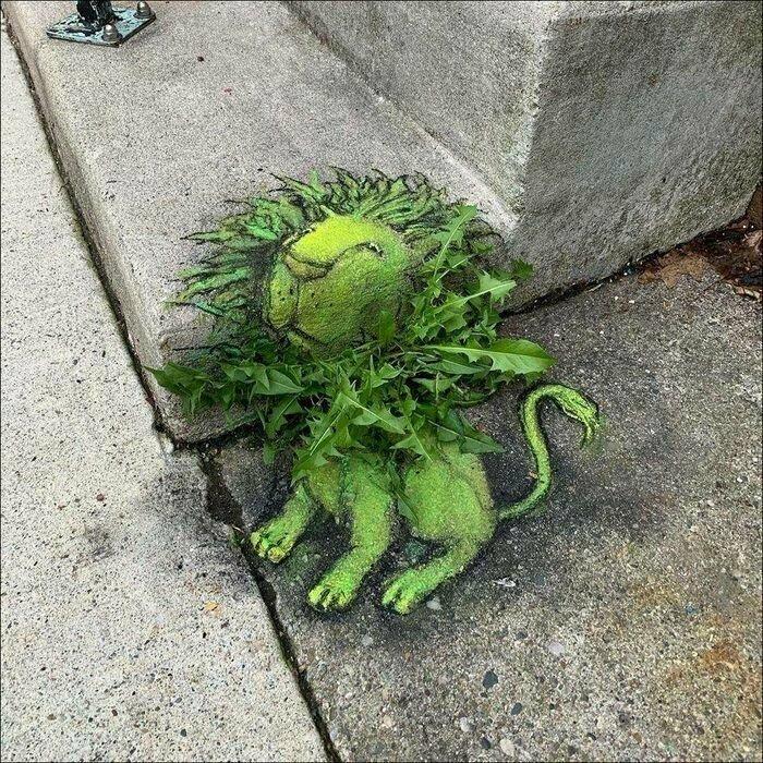 Царь растений