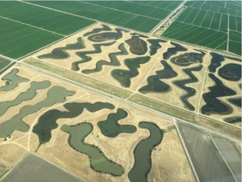 Необычные поля расположены к северу от аэропорта Сакраменто. Страшно интересно, для чего они?