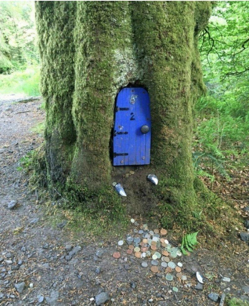 Нашли эту дверцу в Шотландии ...