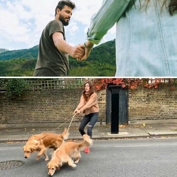 Любовь к собакам сделала британку популярной в Сети