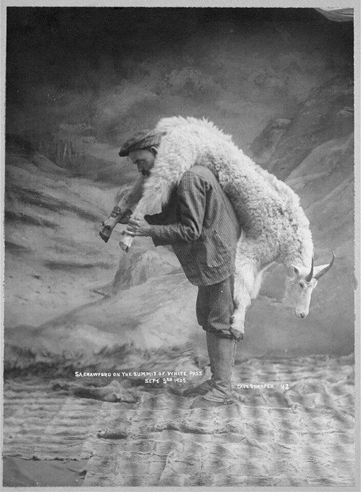 Однажды один мужик водил продавать козу на базар, да не продал...