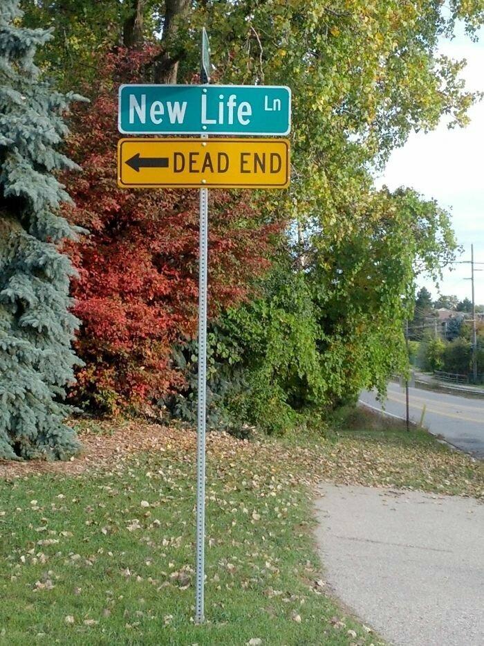 13. Направо - Новая Жизнь, налево - Тупик