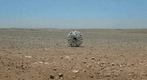 Разминирование при помощи необычного приспособления, приводимого в движение ветром