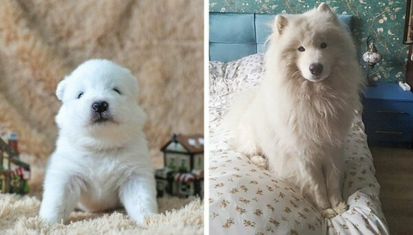 Кто бы мог подумать, что разница в этих фото всего пару лет!