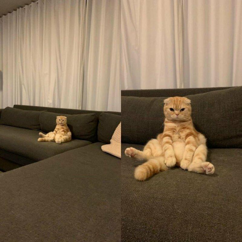 Просто телевизор смотрю