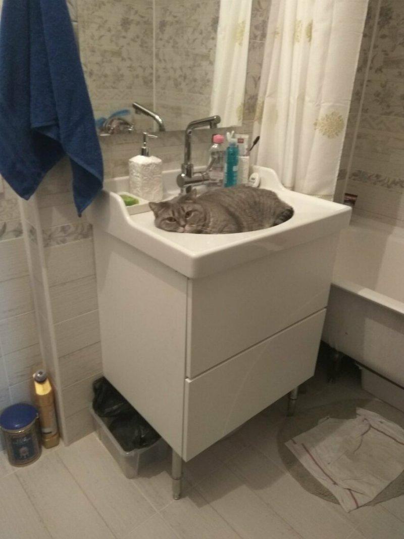 Руки и над ванной можно помыть