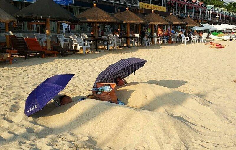 Они знают толк в пляжном отдыхе