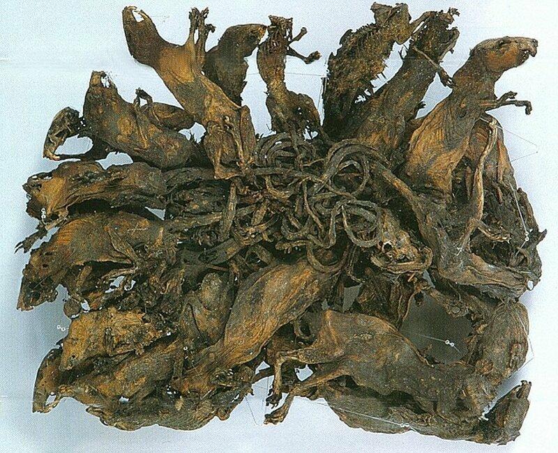 4. Крысиные короли