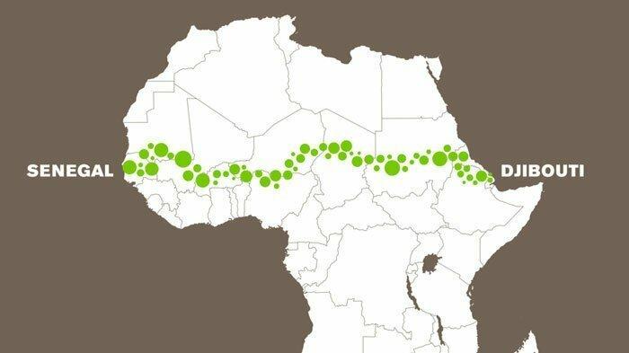 В проекте участвуют более 20 африканских стран - совместно с еще 23 региональными и международными партнерами