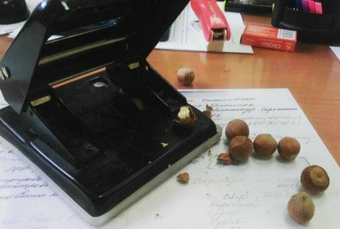 Когда на работе захотелось орешков