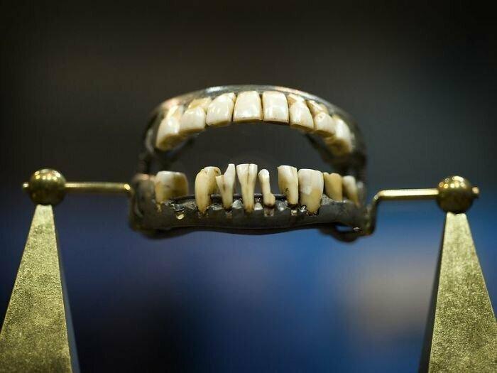 У жорджа Вашингтона не было деревянных зубов