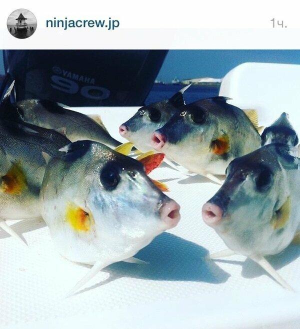 4. Девушки, нет, мужчины обожают рыбалку не из-за этого...