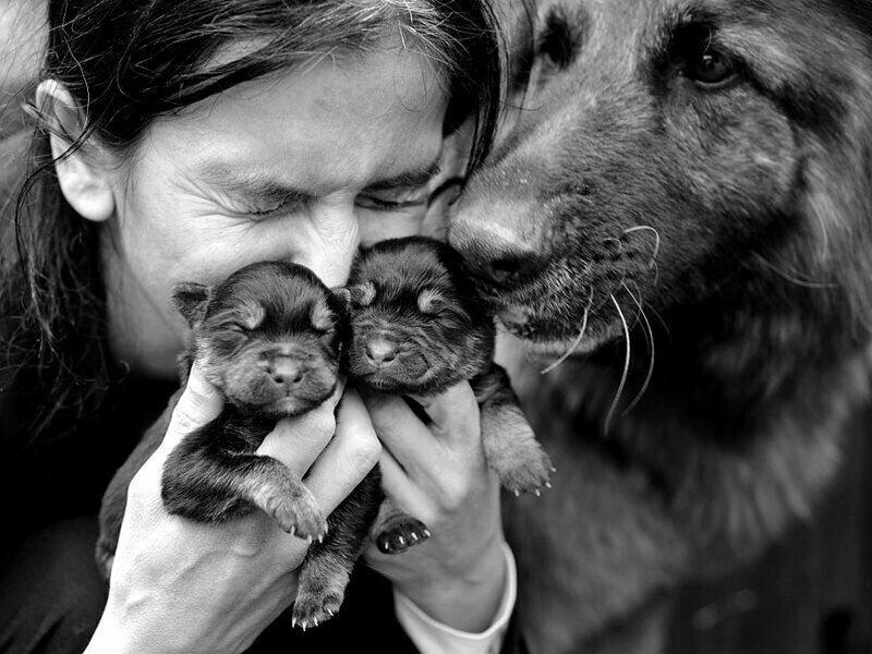 Семейная лирика в исполнении талантливого фотографа из Польши
