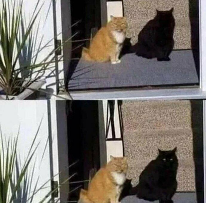 Даже у тени есть глаза