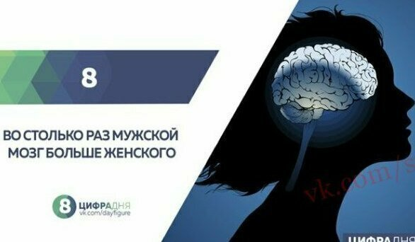 И еще из той же серии - полная ересь, хотя мужской мозг и правда немного больше женского, но никак не в 8 раз. Представляете голову мужиков с таким огромным мозгом?