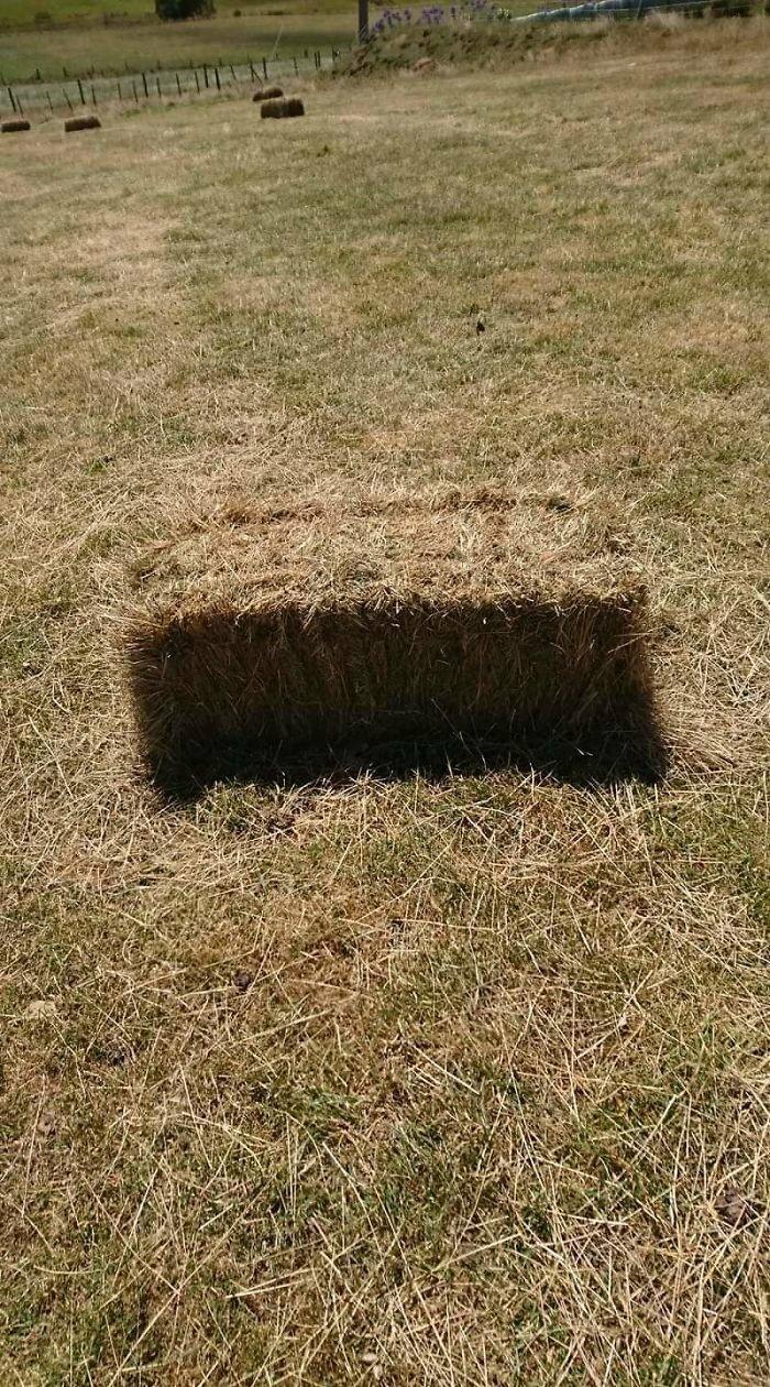 21. Этот тюк сена выглядит как дыра в земле