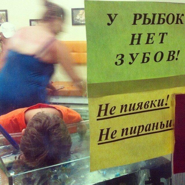 13. Снорклинг в аквариуме