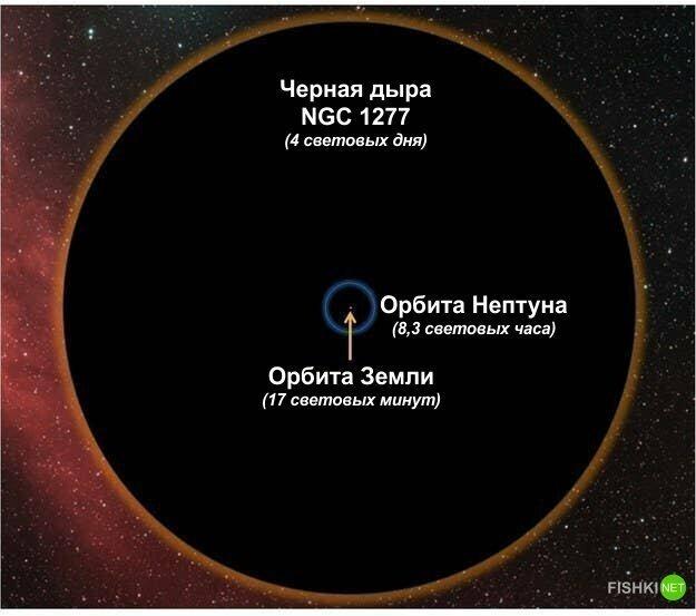 А теперь сравним орбиту Земли с чем-нибудь еще более крупным, чем звезды. Например, с черной дырой