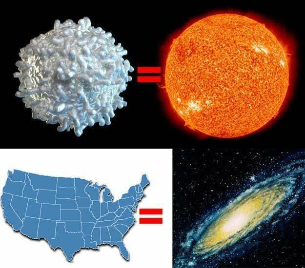 Наша галактика, Млечный путь, просто огромна! Размер США по отношению к Галактике равен размеру одной человеческой кровяной клетки по отношению к Солнцу