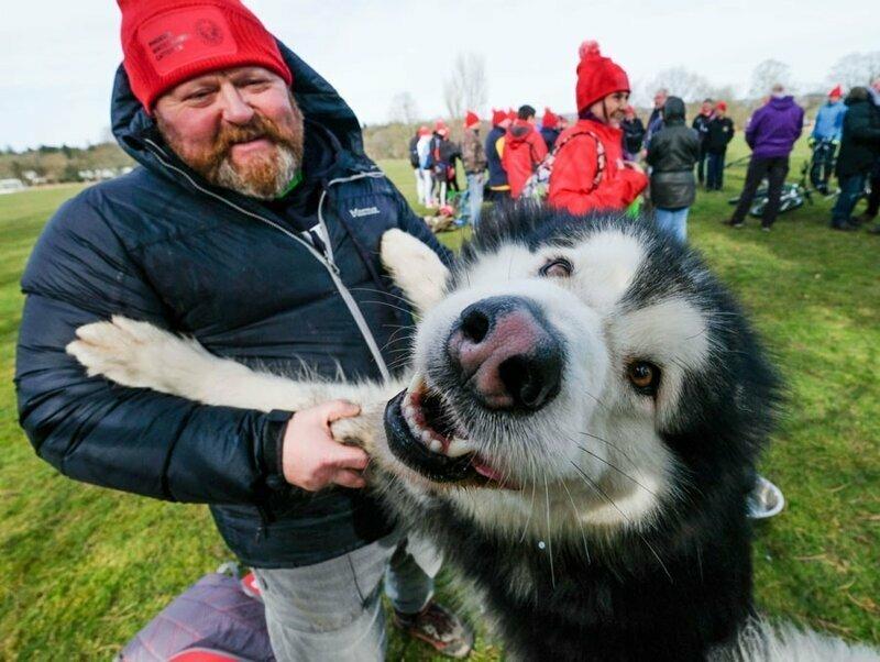 12. Ветераны с ездовыми собаками в Ричмонде, Англия