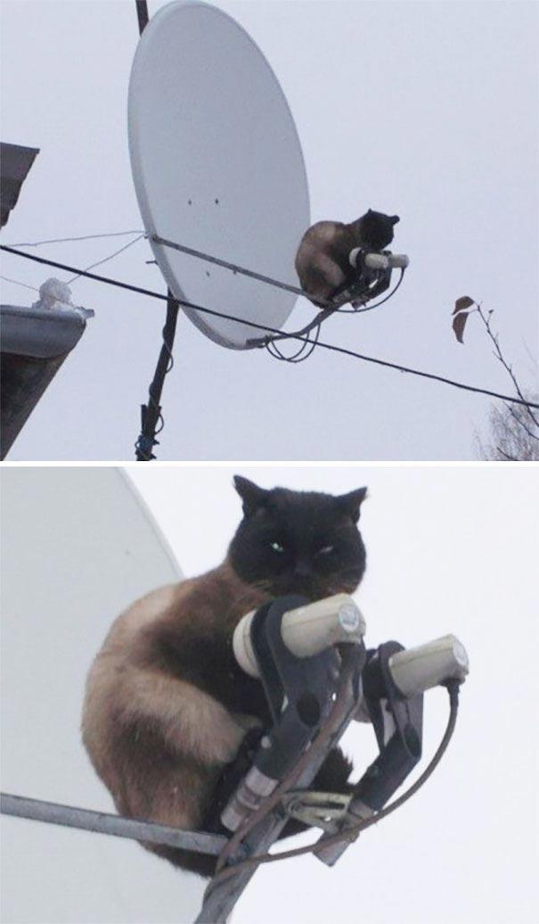Чтобы антенна лучше ловила