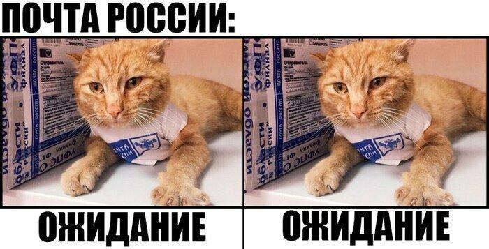 Почта России всегда так делает