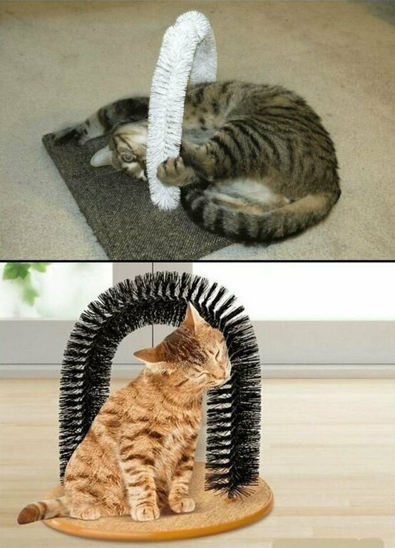 Щетки для кошек - истинное наслаждение