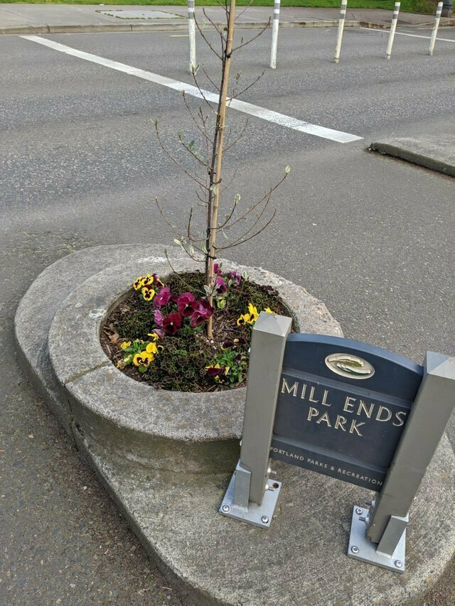 Самый маленький в мире городской парк, расположенный в Портленде, штат Орегон