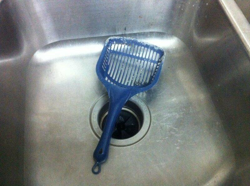 """""""Моя соседка частенько оставляет совок для кошачьего туалета в кухонной мойке..."""""""