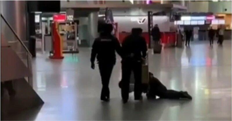 В столичном аэропорту: пьяный задержанный развылся на тележке