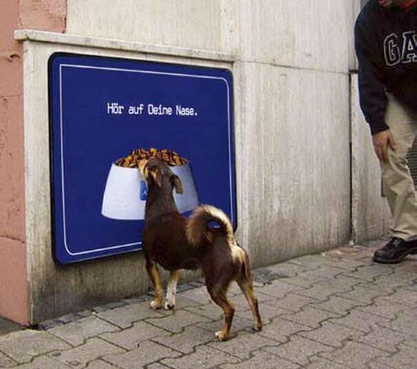 Лучшая реклама собачьего корма