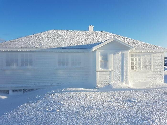 Ледяная корка на доме, мыс Бонависта (остров Ньюфаундленд)