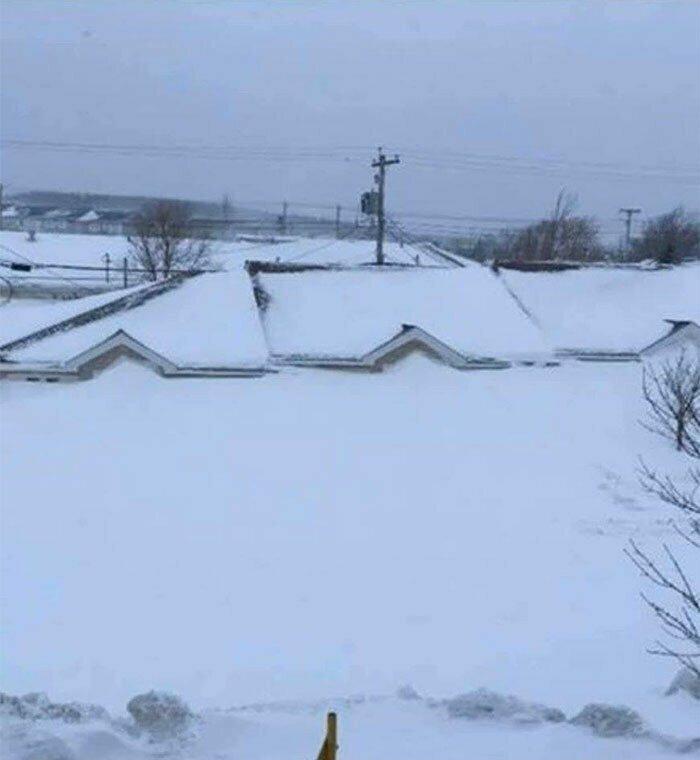Последствия снегопада, Ньюфаундленд