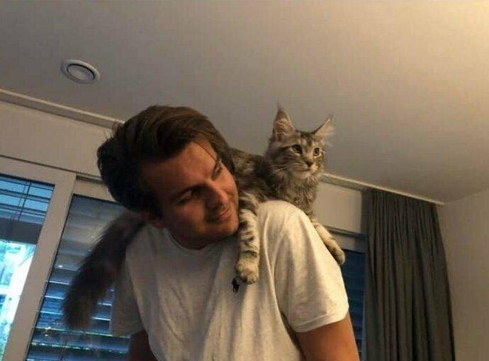 """""""Мой парень тогда: """"Не хочу в этой квартире никаких чертовых животных. Я ненавижу кошек. Ни за что"""". Мой парень теперь: носит кошек на плечах и танцует с ними"""""""