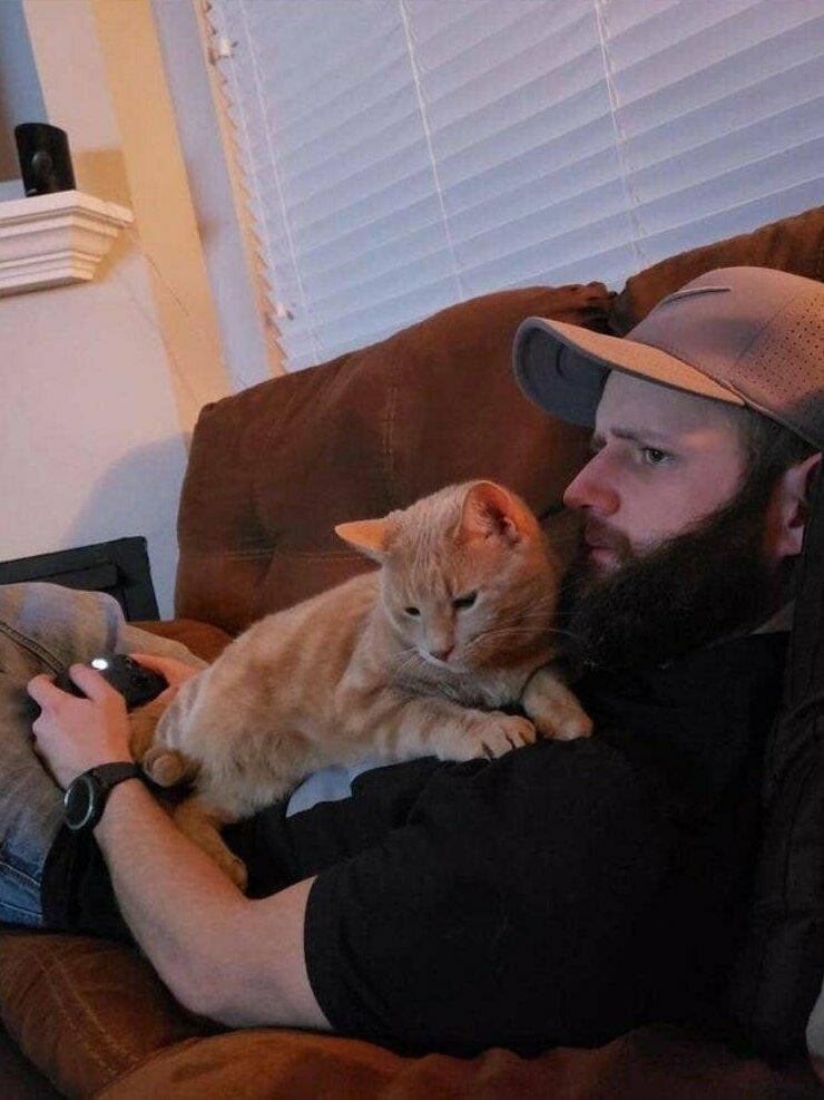 """""""Это мой парень. И это он так по-прежнему """"недолюбливает"""" моего кота"""""""