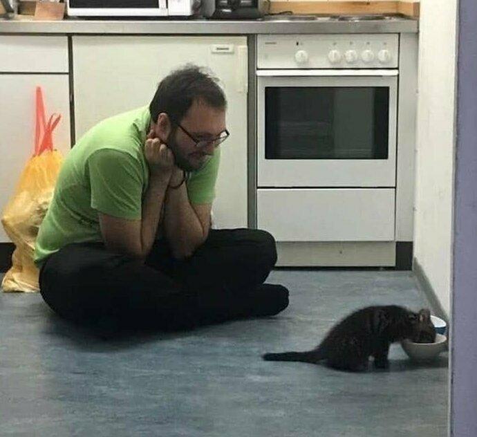 """""""Классический случай: мой парень не любит кошек. Вот он с новым котенком в первый же день"""""""