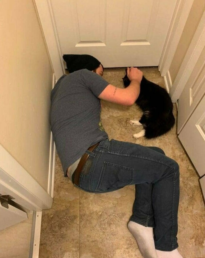 """""""Мой муж, который терпеть не мог кошек, когда мы познакомились, теперь успокаивает нашу кошечку после операции"""""""