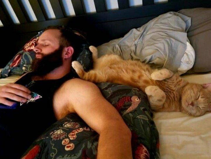 """""""Мой парень и кот, который ему """"не нравится"""""""