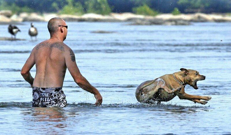 По воде бежит