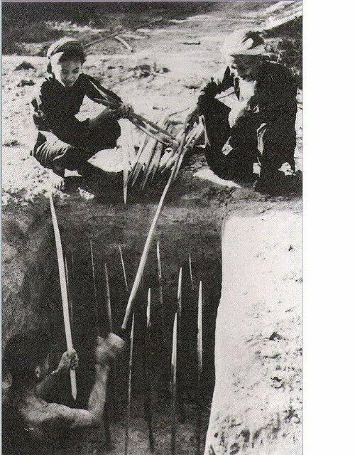 Жуткие ловушки вьетнамских партизан. Вьетнам, 1960-е гг.
