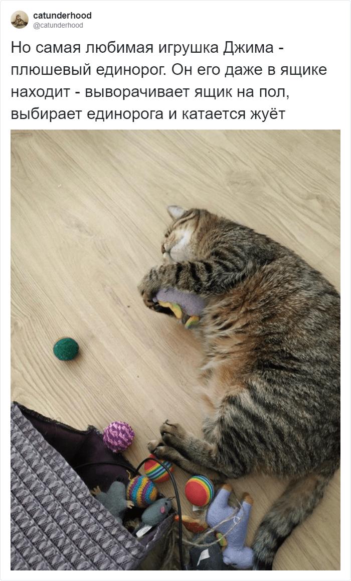 У Джима есть любимая игрушка
