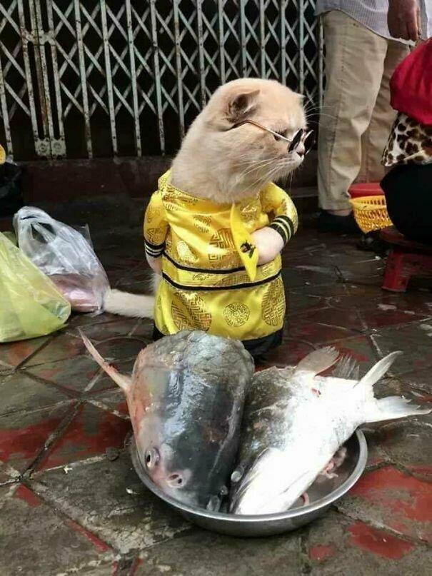 На одном из вьетнамских рынков